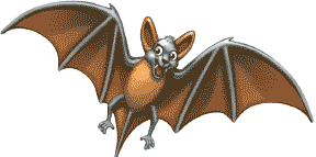 Chauve-souris (bat)