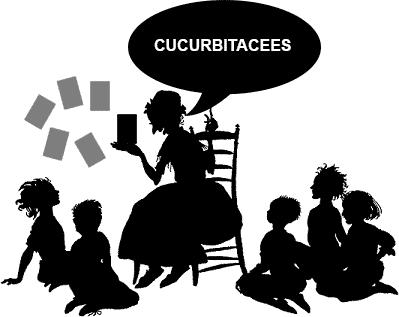 Conteur Dixit