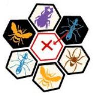 Hive : Déplacement interdit