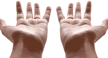 mains vides