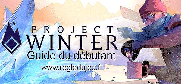Project Winter : Guide